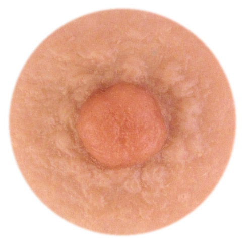 Model Eve 6mm nipple height.<br>Also offered in 4mm & 2mm.            <br>Full nipple width about 14mm.<br>Moderate amount of areola bumps.